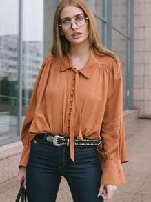 Brown Long Sleeve Lapel Pleated Blouse