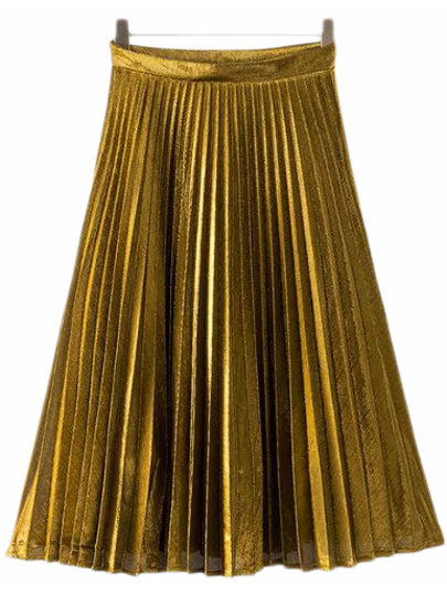 Gold Zipper Side Pleated Flare Skirt