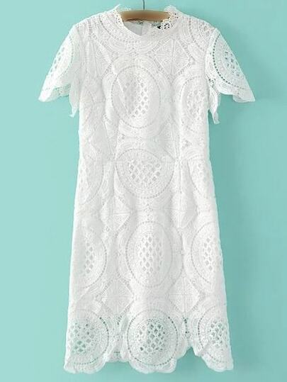 White Band Collor Lace Zipper Dress