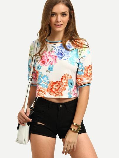 Multicolor Floral Short Sleeve Crop T-shirt