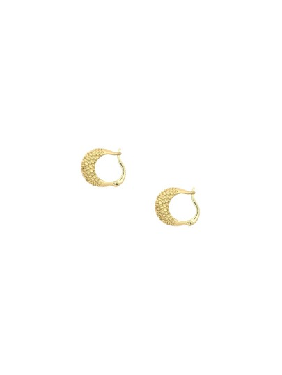 Gold Carved Arc Earrings