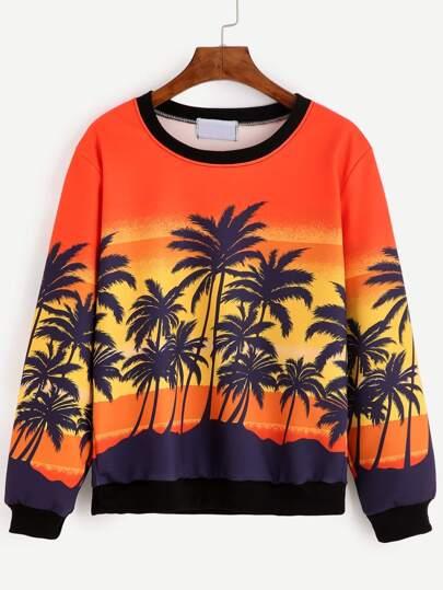 Coconut Tree Print Contrast Trim Sweatshirt