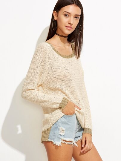 Contrast Trim Raglan Sleeve Dip Hem Knit Sweater