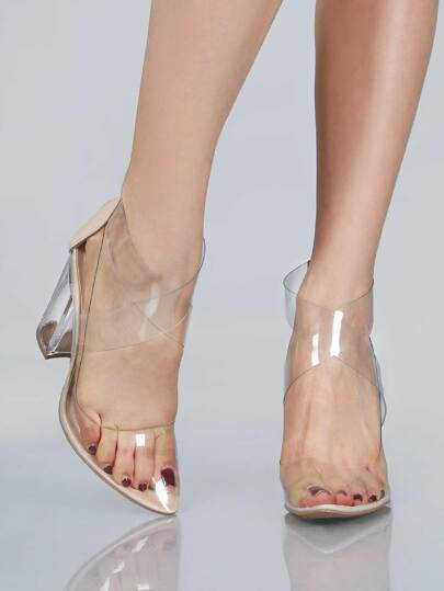 Pointy Toe Transparent Block Heels NUDE