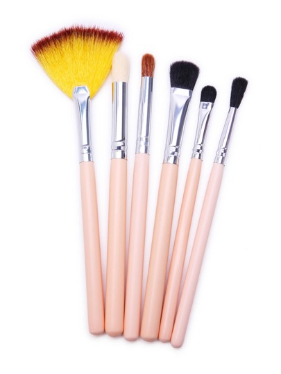 Fan-shaped Sliver Professional Makeup Brush Set 6PCS