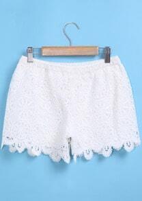 Elastic Waist Lace Crochet Shorts
