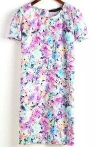 Multicolor Round Neck Short Sleeve Floral Slim Dress