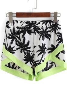 Multicolor Coconut Tree Print Shorts