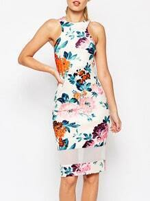 Multicolor Sleeveless Contrast Mesh Floral Dress
