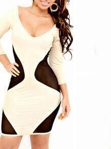 Black Apricot Scoop Neck Sheer Mesh Bodycon Dress