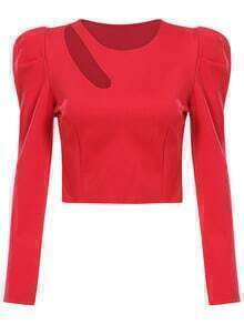 Red Long Sleeve Hollow Crop Blouse