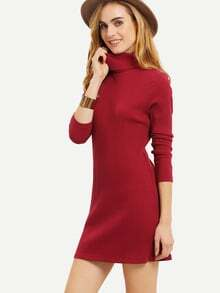 Burgundy Long Sleeve High Neck Dress