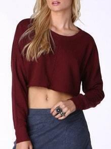Burgundy Round Neck Long Sleeve Crop T-Shirt