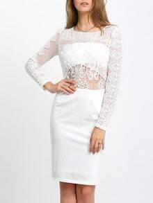 Beige Long Sleeve Crochet Lace Sheath Dress