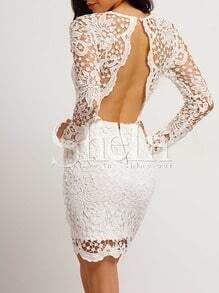 White Lace Backless Bodycon Dress
