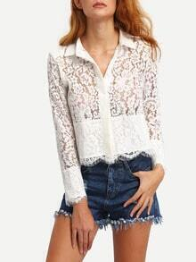 Scalloped Hem Sheer Lace Blouse
