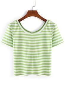 Thick Striped Crop T-shirt - Green