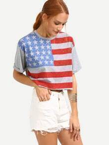 Stars and Stripes Print Crop T-shirt - Grey