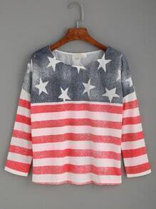 Multicolor American Flag Print T-shirt