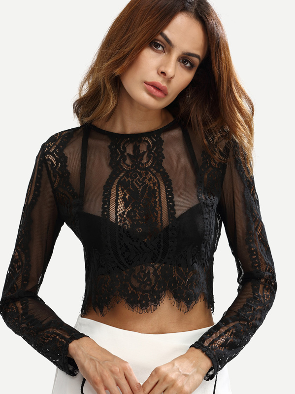 Eyelash Lace Zipper Back Sheer Crop Top, Andy