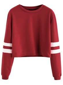Varsity Striped Sleeve Crop T-shirt