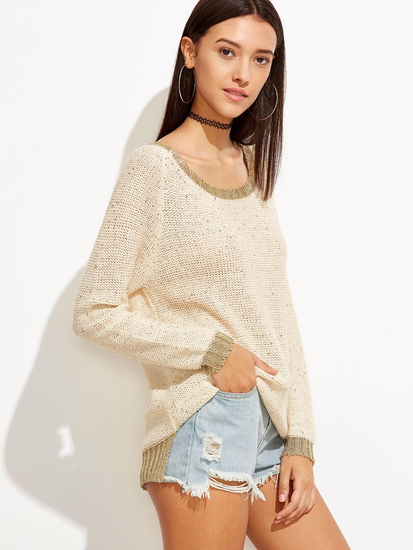 Contrast Trim Raglan Sleeve Dip Hem Knit Sweater sweater160914452