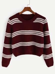 Burgundy Striped Crop Pullover Sweater