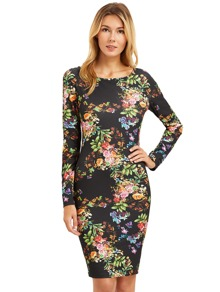Floral Print Long Sleeve Sheath Dress