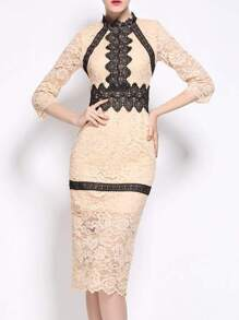 Beige Contrast Crochet Lace Sheath Dress
