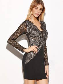 Black Sheer Sleeve Floral Lace Combo Dress
