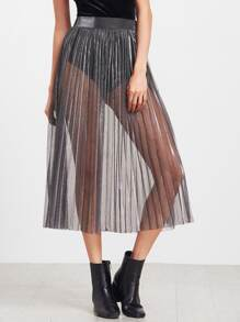 Sheer See-Through Pleated Skirt