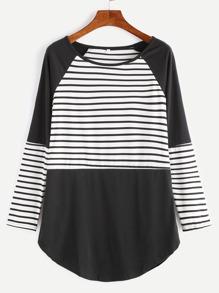 Contrast Striped Raglan Sleeve Curved Hem T-shirt