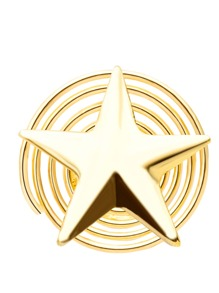 Gold Plated Star Shape Hair Clip