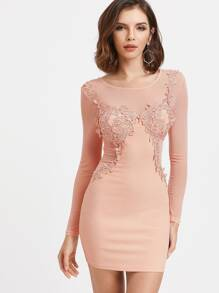 Pink Contrast Sheer Mesh Crochet Trim Bodycon Dress