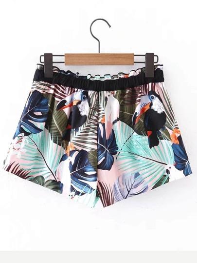 shorts170425201_1