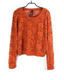 Flowers Eyelet Solid Camel Round Neck Long Sleeve Lace Outerwear