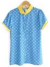 Blue Contrast Collar and Cuffs Polka Dot Chiffon Shirt