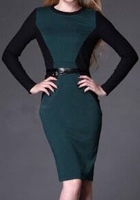 Dark Green Long Sleeve Back Zipper Slim Dress