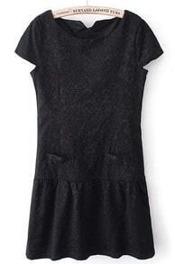 Black Short Sleeve Side Zipper Lace Embroidery Dress