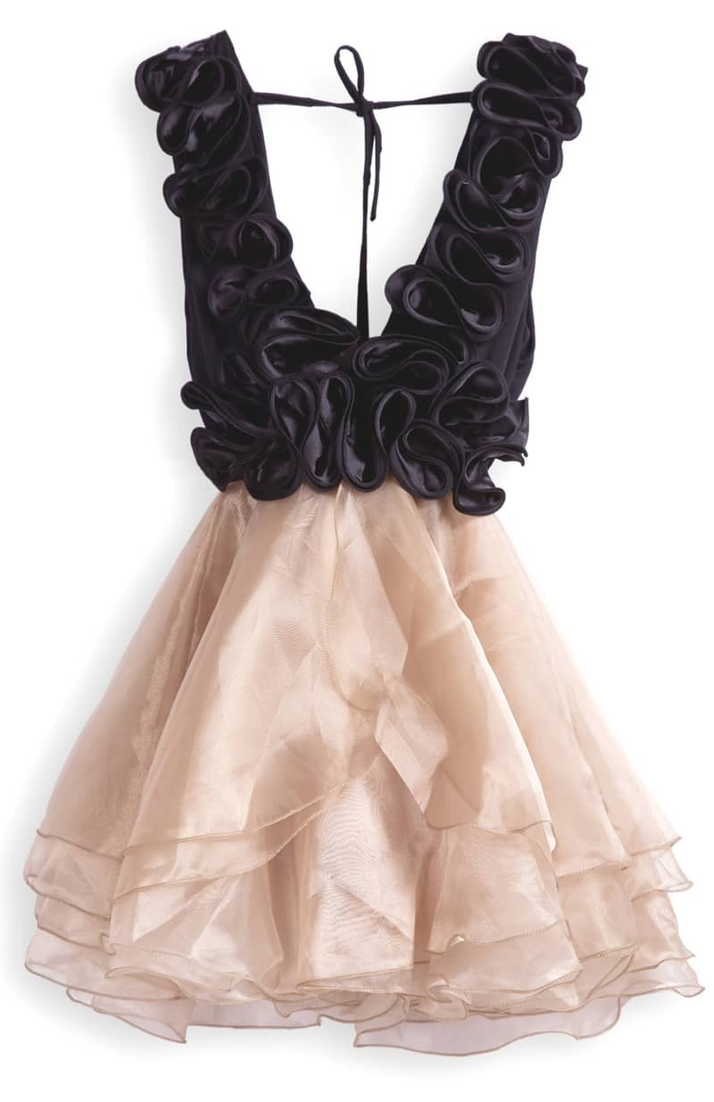 Ruffled Organza Skirt With Embroidered And Beaded Bodice: Champagne V Neck Cascading Ruffle Flare Organza Dress