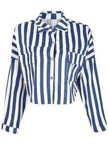 Blue White Vertical Stripe Long Sleeve Crop Blouse