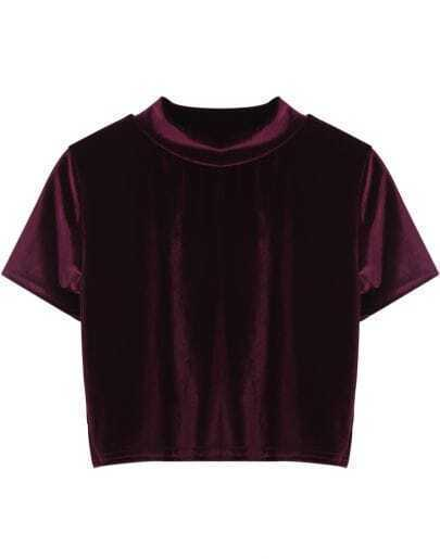 Wine Red Round Neck Short Sleeve Crop Velvet T-Shirt