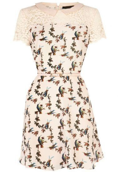 Beige Contrast Lace Short Sleeve Bird Print Dress