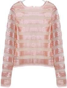 Beige Long Sleeve Striped Lace Crop Blouse