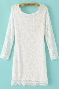 White Long Sleeve Zipper Embroidered Lace Dress