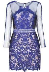 Blue Long Sleeve Lace Hollow Bodycon Dress