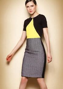 Colour-block Slim Zipper Dress