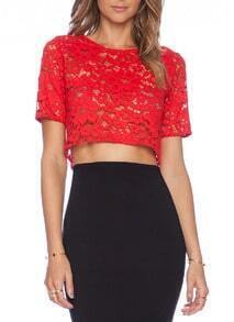 Red Short Sleeve Crop Lace Blouse
