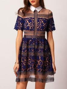 Blue Shutter Peterpan Collars Shirtwaist Great Lapel Contrast Sheer Mesh Eyelash Lace Dress